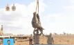 โครงการย้ายถิ่นช้างในมาลาวี