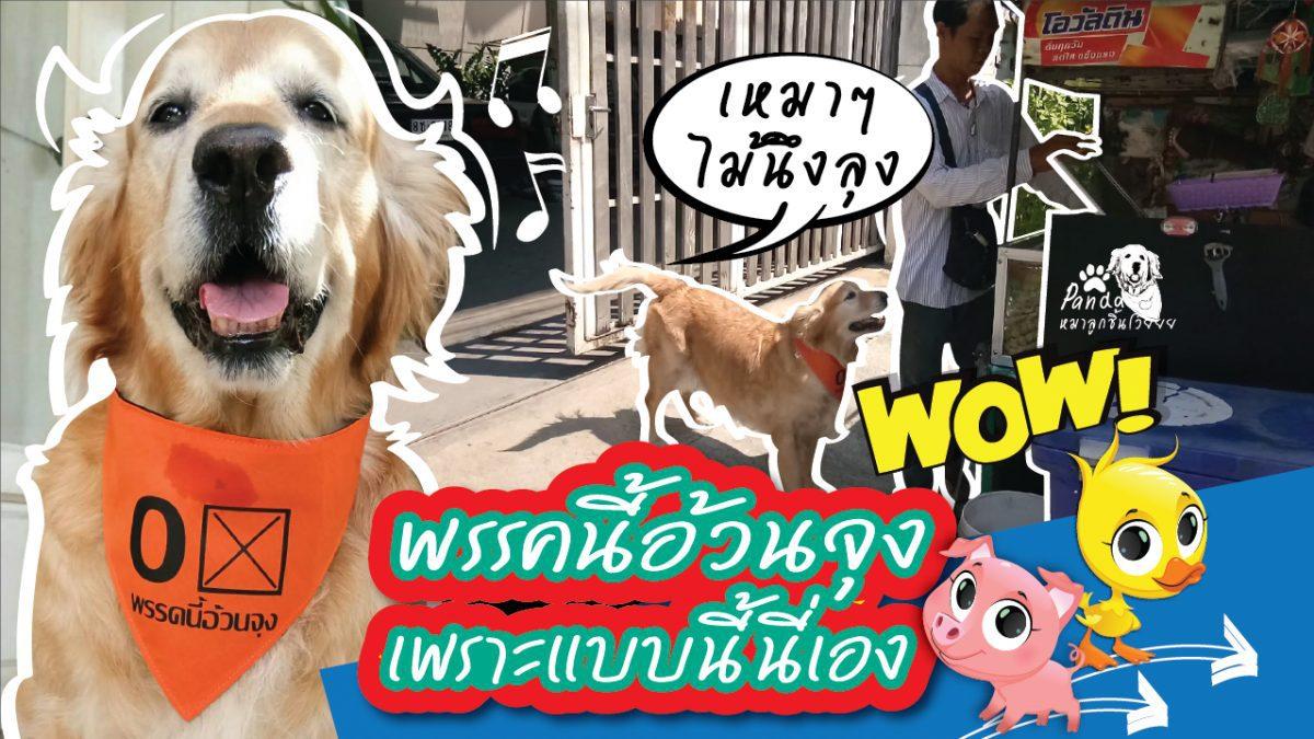 #Pandaกล่าว พรรคนี้อ้วนจุง หุหุ