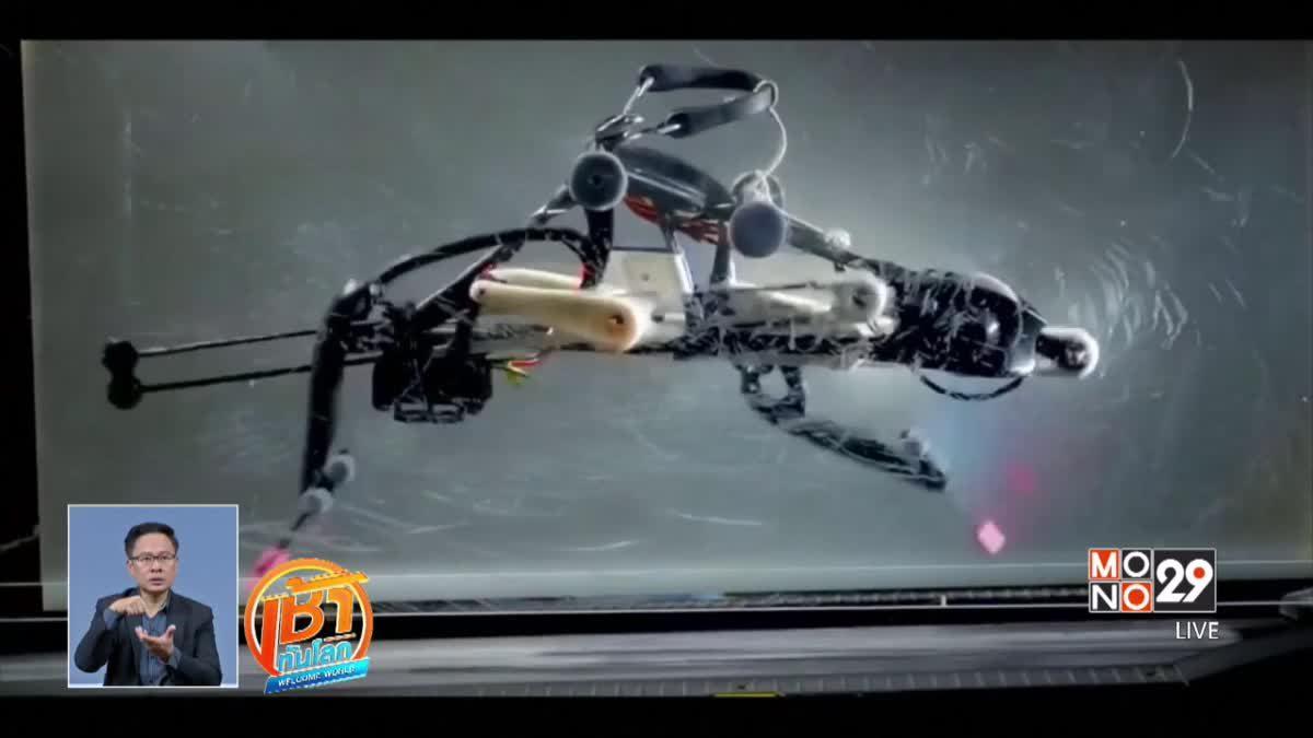 หุ่นยนต์นกกระจอกเทศ