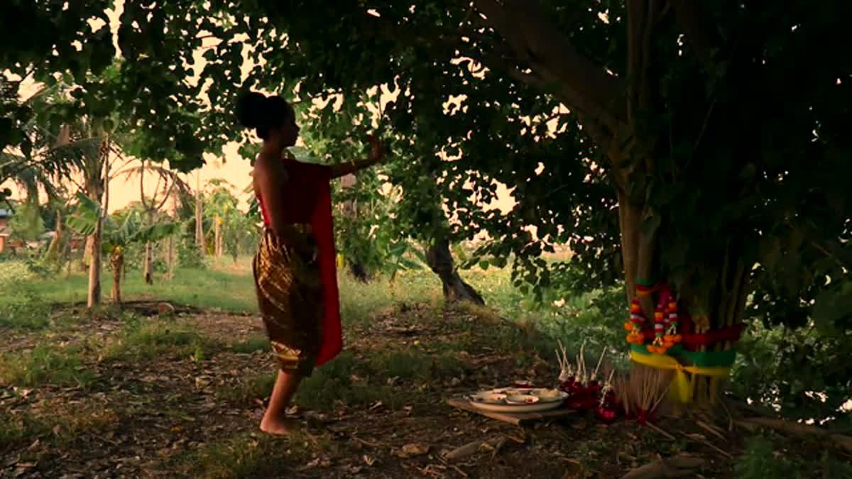 Ism of tree