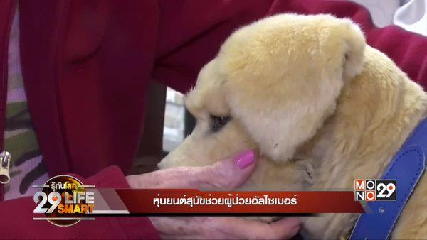 29 Lifesmart : หุ่นยนต์สุนัขช่วยผู้ป่วยอัลไซเมอร์