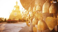 สถานที่ เที่ยวไทยรับพร 12 ราศี ปี62 พร้อมเคล็ดลับการไหว้ โดย อ.คฑา ชินบัญชร