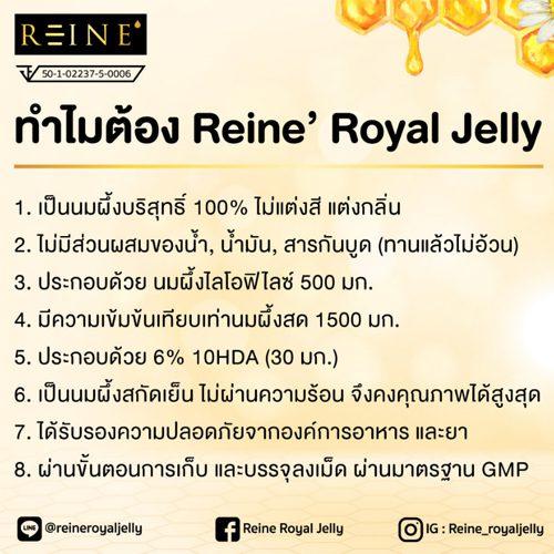 นมผึ้ง Reine