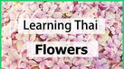 Learning Thai : Flowers