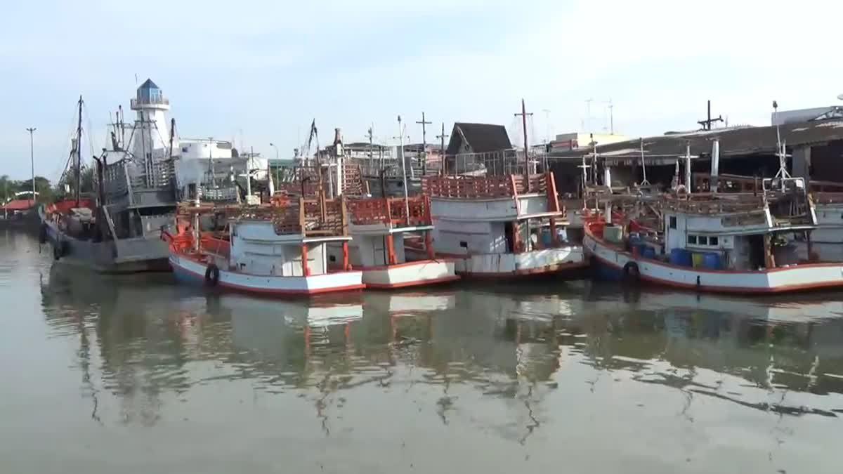 เรือประมงโอด!! เดือดร้อนหนักน้ำมันราคาแพงจี้รัฐแก้ไขด่วน
