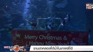 ซานต้าโดดลงน้ำ! ให้อาหารปลาเป็นของขวัญวันคริสต์มาส