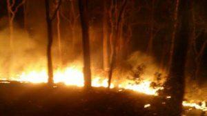 ระทึก! ไฟไหม้ป่าเหนือดอยพระบาท ลุกลามเพิ่ม 20ไร่