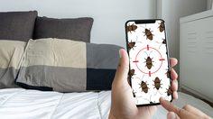 6 วิธีกำจัดตัวเรือด แมลงร้ายบนที่นอนให้สิ้นซาก