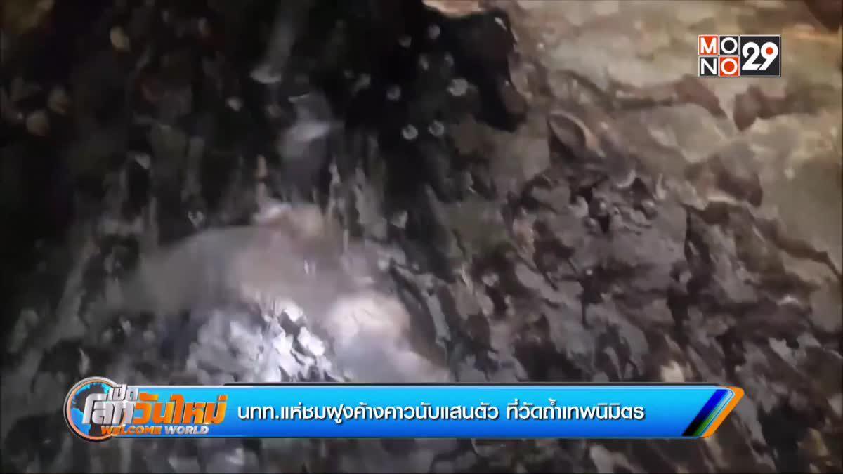 นทท.แห่ชมฝูงค้างคาวนับแสนตัว ที่วัดถ้ำเทพนิมิตร