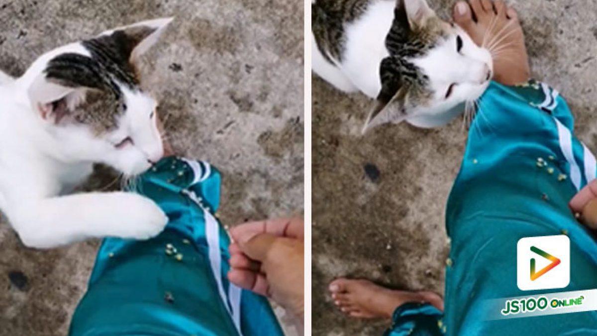 มาแม่.. เดี๋ยวหนูช่วยดึงออกจากกางเกงให้เอง