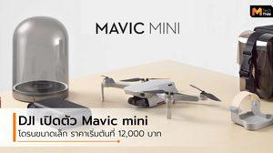 DJI เปิดตัว Mavic Mini โดรนขนาดเท่าฝ่ามือ บินได้นาน 30 นาที