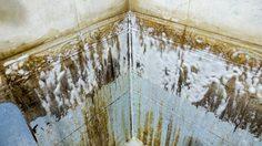 3 เคล็ดลับง่ายๆ ช่วย ขจัดคราบหินปูน ในห้องน้ำให้อยู่หมัด