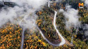 ประหยัด 8 ชม.! จีนสร้าง 'ทางหลวง' ผ่าหุบเขาลึกสุดในโลกสำเร็จ