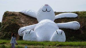 กระต่ายขาวตัวใหญ่ยักษ์ ไต้หวัน ไฟไหม้วันจบโชว์