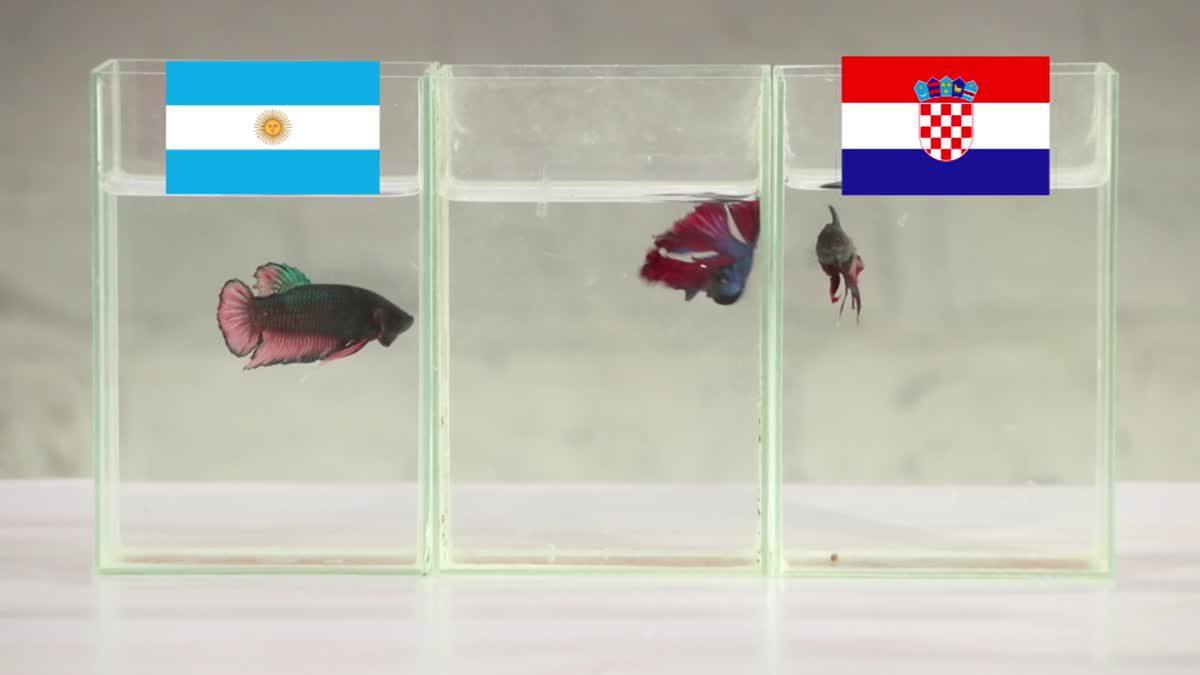 ซี้ซั้วเอามาเล่า ฟันธง ฟุตบอลโลก 2018 EP6