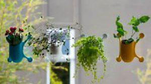 Livi Livens กระถางต้นไม้ แนวใหม่ ติดกระจกเก๋ๆ