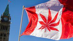 พริ้มกันทั้งเมือง!! ชาวแคนาดาออกมาฉลอง หลังจากสามารถเสพ กัญชา ได้อย่างถูกกฎหมาย