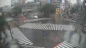 'ฮากิบิส' จ่อเข้าหลังเที่ยงนี้ แค่ขอบพายุทำฝนตกหนัก – จ.ชิบะ ไฟดับ 4.8 แสนครัวเรือน