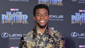 นักแสดงนำจาก Black Panther ร่วมเดินพรมแดงในรอบพรีเมียร์ กลางมหานครลอสแองเจลิส