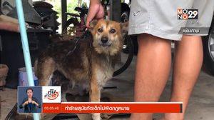 สมาคมป้องกันการทารุณสัตว์ เผยทำร้ายสุนัขกัดเด็กไม่ผิดกฎหมาย