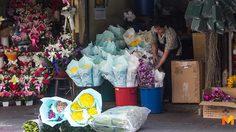ราคาดอกกุหลาบที่เชียงใหม่พุ่งรับ วาเลนไทน์