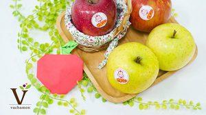 กินแอปเปิ้ลวันละ 1 ผล บอกลา 9 โรคร้าย ให้ห่างไกลตัวเรา
