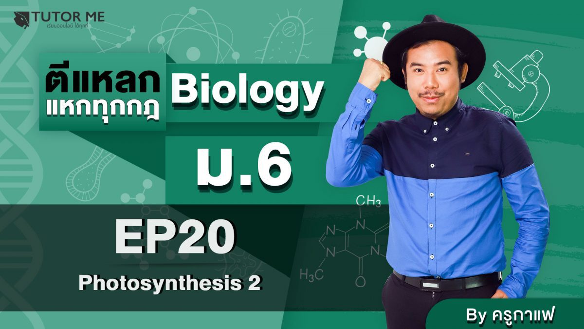 EP 20 Photosynthesis 2