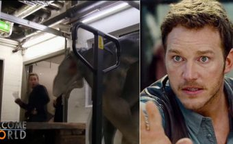 ไดโนเสาร์กระโจนใส่พระเอกจูราสิคเวิลด์