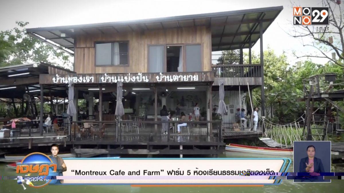 """""""Montreux Cafe and Farm"""" ฟาร์ม 5 ห้องเรียนธรรมชาติของเด็ก"""