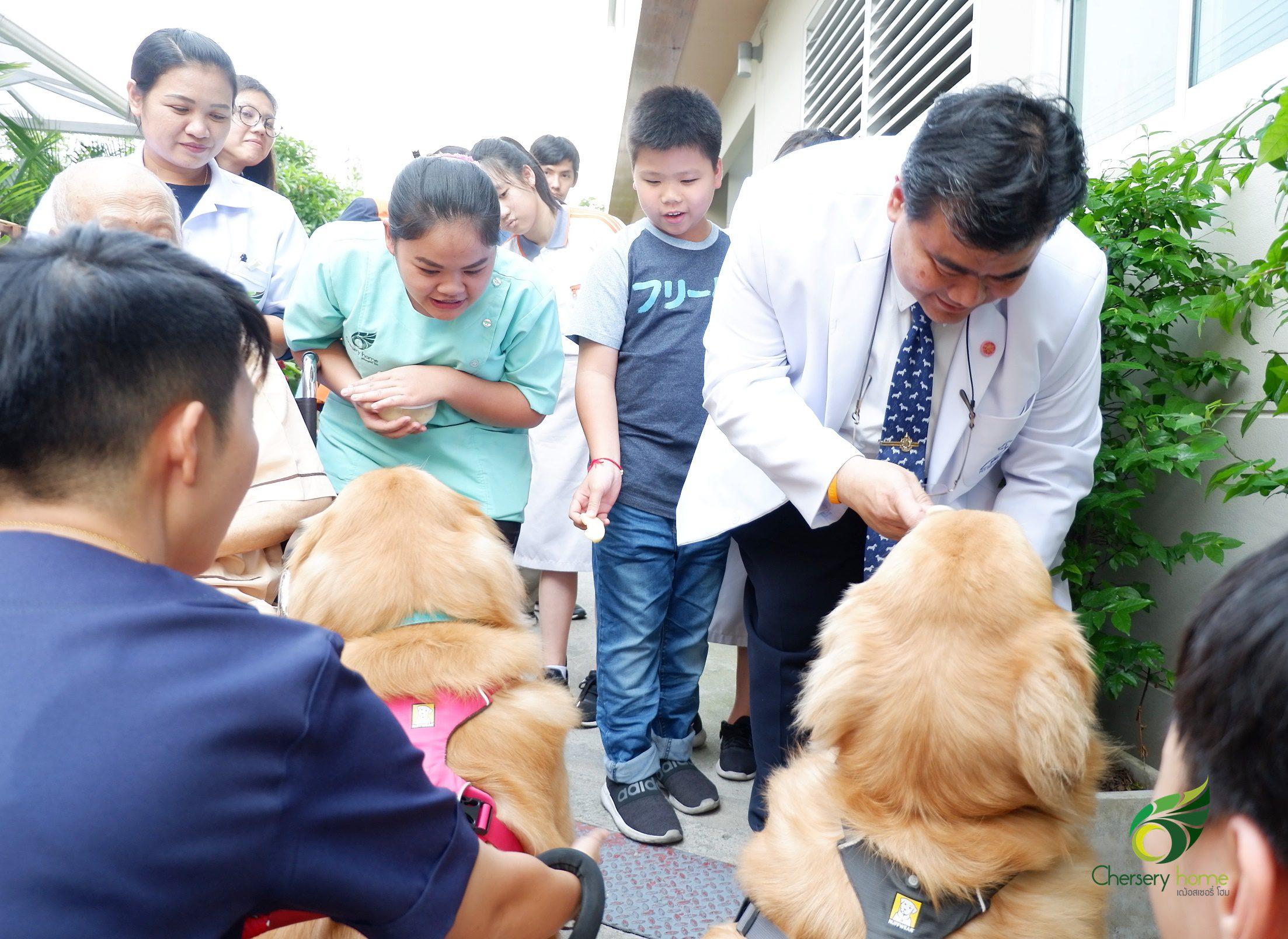คลายเหงาสูงวัย… ด้วยสัตว์เลี้ยงแสนน่ารัก (Pet Therapy)