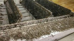 วิธีขจัดเชื้อราในเครื่องใช้ไฟฟ้า ให้สะอาดแถมยังน่าใช้ขึ้นอีกด้วย