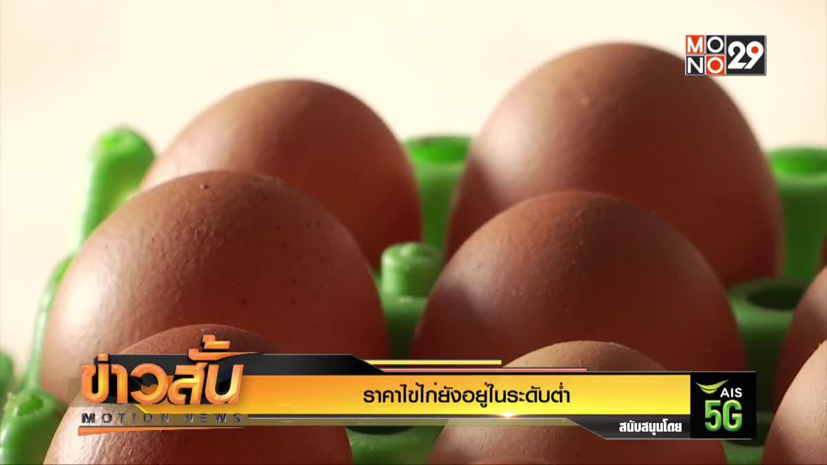 ราคาไข่ไก่ยังอยู่ในระดับต่ำ