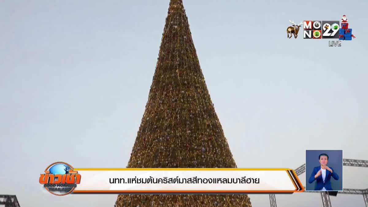 นทท.แห่ชมต้นคริสต์มาสสีทองแหลมบาลีฮาย