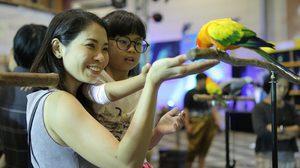 รวมพลคนรัก สัตว์เลี้ยง สุดคึกคัก วี เลิฟ เพ็ตส์ ครั้งที่ 8 จัดเต็มความสนุก!