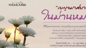 เชิญเที่ยวงาน เบญจมาศบาน ในม่านหมอก ครั้งที่ 13