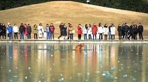 จีนหนาวสุดขั้ว! สุนัขติดแหง็กในทะเลสาปน้ำแข็ง นักข่าวฮีโร่ลุยเข้าช่วย