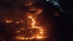 ระทึก! ไฟไหม้ป่าทางขึ้นเขาวงพระจันทร์ ขณะจัดงานกราบรอยพระพุทธบาท