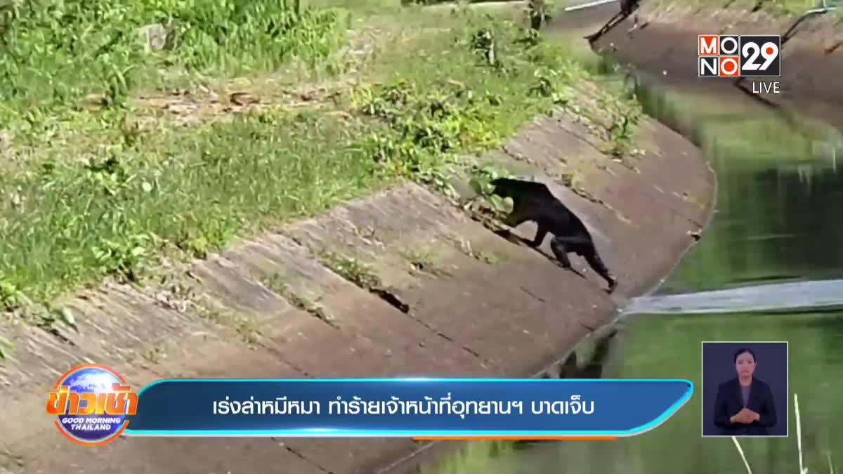 เร่งล่าหมีหมา ทำร้ายเจ้าหน้าที่อุทยานฯ บาดเจ็บ