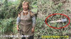 ป้าชาวจีนคิดว่าระเบิดเป็น สากกะเบือ จนเกือบเอาไปตำพริกไทยแล้วมั้ยละ…..!!