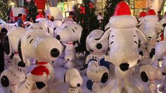 ชมต้นคริสต์มาส และกองทัพสนู้ปปี้ได้แล้ว ที่เซ็นทรัลเวิร์ล