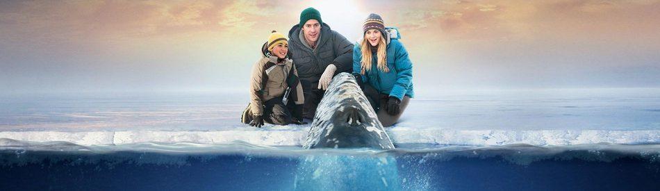 Big Miracle ปาฏิหาริย์วาฬสีเทา