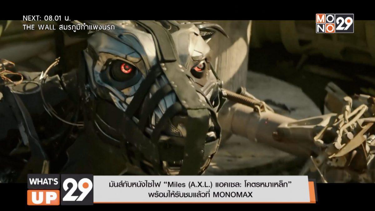 """มันส์กับหนังไซไฟ """"Miles (A.X.L.) แอคเซล: โคตรหมาเหล็ก"""" พร้อมให้รับชมแล้วที่ MONOMAX"""