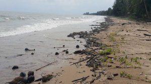 พบคราบน้ำมันดิบ ชายหาดชุมพร ยาว 100 กม.