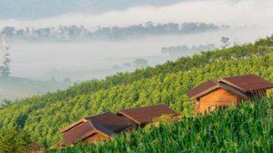 เที่ยววังน้ำเขียว สวิตเซอร์แลนด์แห่งแดนอีสาน