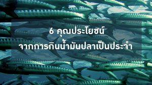 6 คุณประโยชน์ จากการกินน้ำมันปลาเป็นประจำ