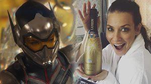 เอวานเจลีน ลิลลี ดื่มแชมเปญฉลอง!! หลังถ่ายคิวของตัวเองในหนัง Avengers 4 เสร็จแล้ว