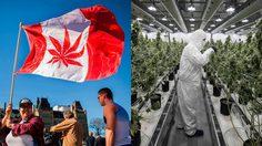 ของขาด!! พอแคนาดาเปิดกัญชาถูกกฎหมาย ก็เจอปัญหาของไม่พอขายซะงั้น