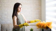 เทคนิค กำจัดฝุ่นละออง ในจุดที่ทำความสะอาดยากให้หายเกลี้ยง