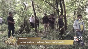 จนท.ตรวจสอบไม่พบ บ.เครือกระทิงแดง รุกป่าห้วยเม็ก