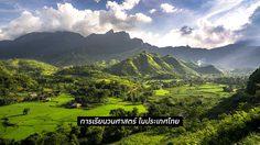 วนศาสตร์ - ศาสตร์แห่งทรัพยากรธรรมชาติ การเรียนวนศาสตร์ ในประเทศไทย